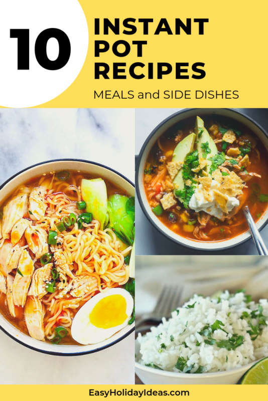 Whether you're looking for Instant Pot Chicken Recipes or Healthy Instant Pot Recipes, this list of easy instant pot recipes has a little of everything for you.